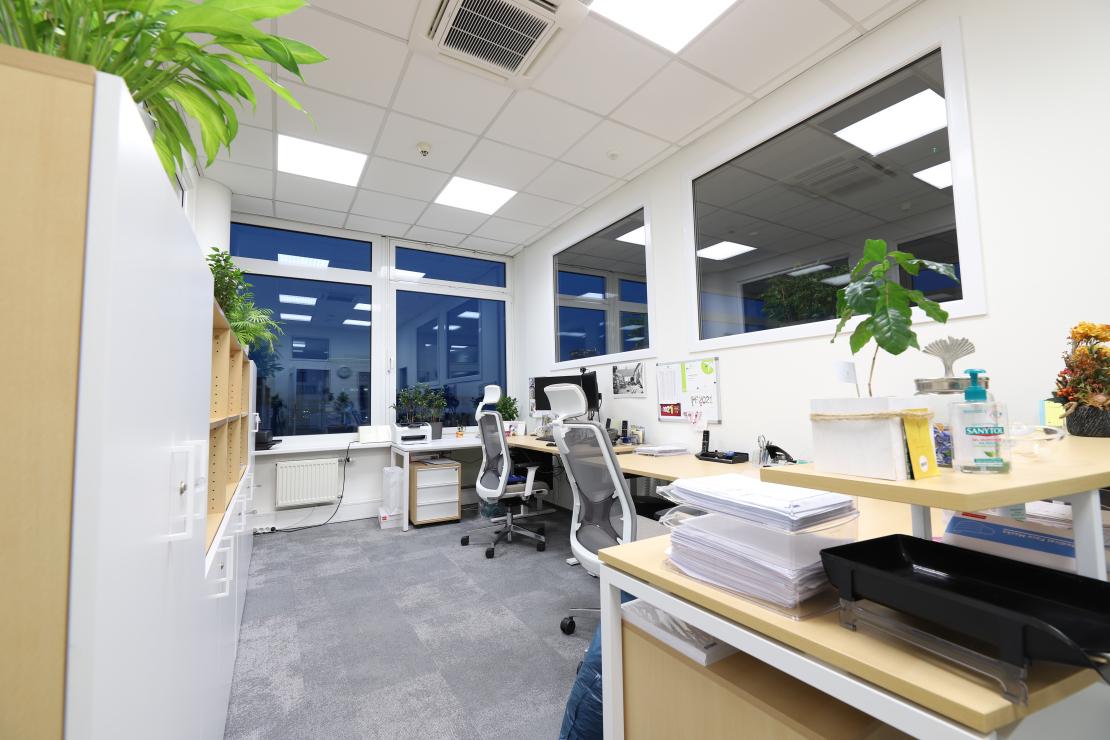 Kanceláře BIBUS s DALI řízením svítidel